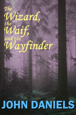 wizardwaifandwayfinder25_thumbnail